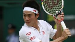 Nhật Bản rúng động trước thông tin tay vợt Nishikori bán độ