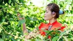 Vẻ đẹp cô gái Thái trong sắc xuân Tây Bắc
