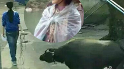 Phạm Băng Băng hóa gái quê chăn trâu thuần phác