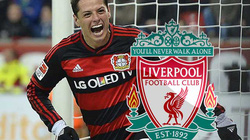 Hận Van Gaal, Chicharito chuẩn bị gia nhập Liverpool?