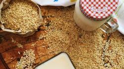 Tự làm sữa gạo lứt - thơm ngon mà bổ dưỡng