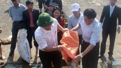 Quảng Nam thả 50.000 cá giống xuống hồ thuỷ điện
