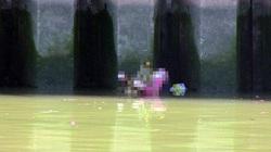 TPHCM: Phát hiện thi thể cô gái nổi trên kênh Nhiêu Lộc
