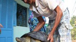 """Chủ nuôi đi cùng công an để… nhận lại cụ rùa """"khủng"""""""
