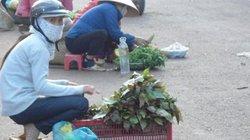 """""""Đặc sản"""" của núi rừng Đắk Nông"""