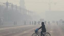 WHO: 23% ca tử vong trên thế giới liên quan đến môi trường