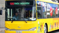 TP HCM mở tuyến buýt '5 sao' từ sân bay đi trung tâm