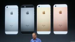 iPhone SE ra mắt, giá cổ phiếu của Apple sụt giảm