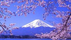 Chiêm ngưỡng 10 ngọn núi lửa đẹp nhất thế giới