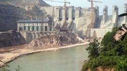 """Thủy điện phớt lờ """"nợ"""" trồng rừng thay thế"""