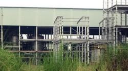 Lập BCĐ xử lý yếu kém một số dự án ngành công thương