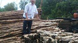 Long An: Dân bức xúc vì bỗng dưng bị mất trắng rừng tràm