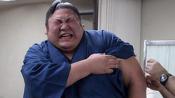 Võ sĩ sumo Nhật Bản nhăn nhó, khóc tu tu khi tiêm phòng cúm