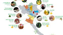Khám phá nông sản sạch khắp mọi miền đất nước