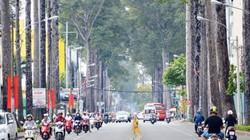 """Ngày cuối năm, tuyến đường """"truyền thống"""" kẹt xe ở SG thông thoáng"""