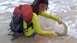 """Brazil: Cô gái """"lĩnh đòn"""" vì lôi cá mập lên bờ chụp ảnh"""