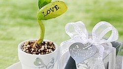 Gợi ý mua quà Valentine đẹp và ý nghĩa với giá dưới 100 ngàn đồng
