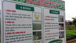 Đà Nẵng: Đảm bảo 100% chợ các hạng được kiểm soát ATTP