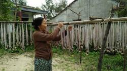 Quảng Nam: Ngư dân phơi giàn cá hố đung đưa dưới nắng