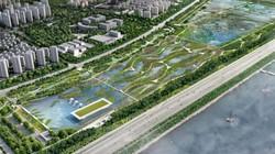 """TQ sắp xây """"sân bay"""" dành cho chim đầu tiên trên thế giới"""
