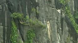 """""""Báu vật"""" vườn quốc gia Phong Nha-Kẻ Bàng có gì đặc biệt?"""