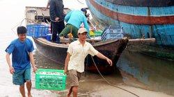 Hà Tĩnh: Bỏ lại sự cố Formosa, những con tàu lại vươn khơi xa