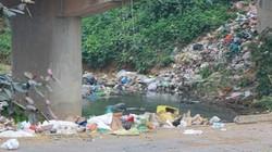 Nghệ An: Rác ngập tràn dưới chân cầu Phú Phương