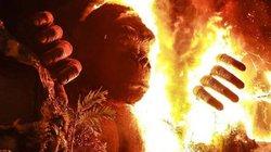 """Dân mạng chế ảnh về buổi ra mắt phim """"Kong: Skull Island"""" bốc cháy"""