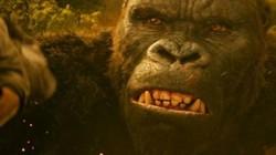 """Chuyện khó quên khi theo chân """"Kong: Skull Island"""" quay tại Việt Nam"""
