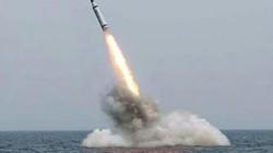 Tên  lửa Triều Tiên có thể vô hiệu hóa hệ thống THAAD của Mỹ tại  Hàn Quốc