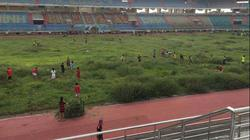 """Sân bóng đá trăm tỷ bỏ hoang, """"nuôi cỏ"""" ở Ninh Bình"""
