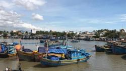 Bình Thuận: Giá dầu bấp bênh, ngư dân vẫn bám biển