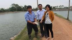Tiếp sức cho nông dân nuôi cá rô phi Đường Nghiệp