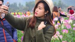 Ngày đầu năm hoa nở rực rỡ ở thiên đường hoa Quảng La