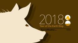 Tử vi tuổi Hợi năm Mậu Tuất 2018