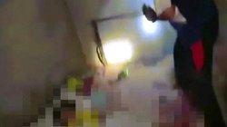Thái Lan: Đánh chết rắn hổ mang trả thù cho bé gái bị cắn tử vong