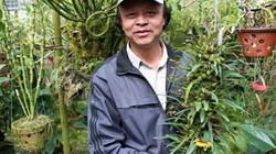 """""""Lạc"""" vào vườn phong lan đặc hữu độc, lạ của lão nông Đà Lạt"""