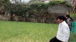 Chuyện ở Vạn Ninh: Vay vốn trồng tỏi thoát được nghèo