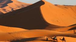 Kinh ngạc ngắm những sa mạc khô cằn đẹp đến khó tin