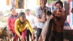 """Gia đình """"chân sút"""" Đất Tổ mổ lợn đãi hàng xóm chờ xem U23 Việt Nam"""