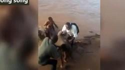 Giải cứu voi con bị bỏ rơi ở khúc sông chứa đầy cá sấu