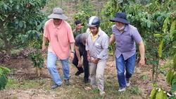 Lâm Đồng: Bắt khẩn cấp nghi can giết chủ nợ rồi phi tang xác