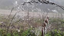 Tin mới nhất về không khí lạnh tăng cường, miền Bắc giảm nhiệt độ nhanh chóng mặt, có nguy cơ băng giá cao
