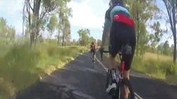 Chuột túi từ đâu xuất hiện, bay thẳng vào đầu người đạp xe