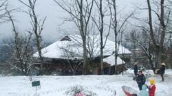 Du khách khắp nơi đổ về Sa Pa ngắm tuyết rơi