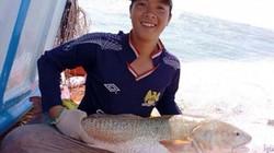 Cà Mau: Bắt được cá lạ nghi cá sủ vàng tiền tỷ