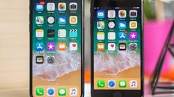 """Apple """"bỏ túi"""" gần 90 tỷ USD, iPhone X bán đắt như tôm tươi"""