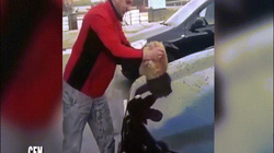 Thanh niên Nga dùng mèo làm giẻ lau ô tô gây phẫn nộ