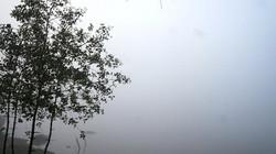 Kỳ lạ: Mồng 1 Tết, Quảng Nam chìm trong sương mù