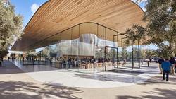 Sự xuất sắc trong thiết kế của Apple đang làm hại nhân viên